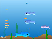 "Play Flash Game: ""Fishy"" Free"